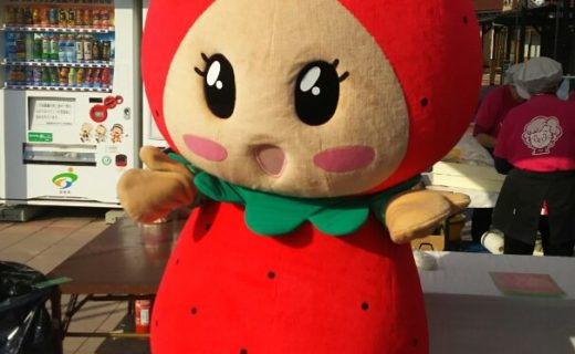やすぎのイチゴ祭り2019(3月2日、3日開催)